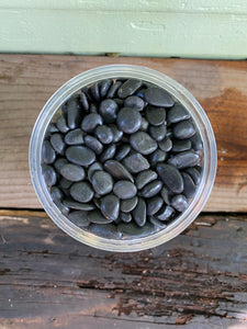 Black Gravel Polished - Mickey Hargitay Plants