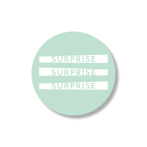 surprise stickers (24st)