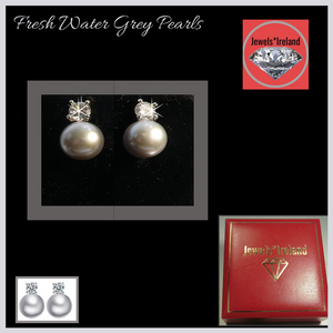 Fresh water Grey pearl earrings