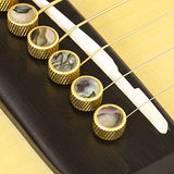 D'Andrea Acoustic Guitar Brass Bridge Pins – Flat Top Design with Abalone Inlay