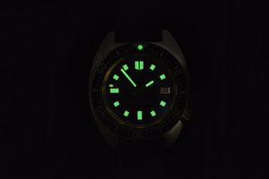 Rdunae Vintage Turtle 6105-8000 - WR Watches PLT