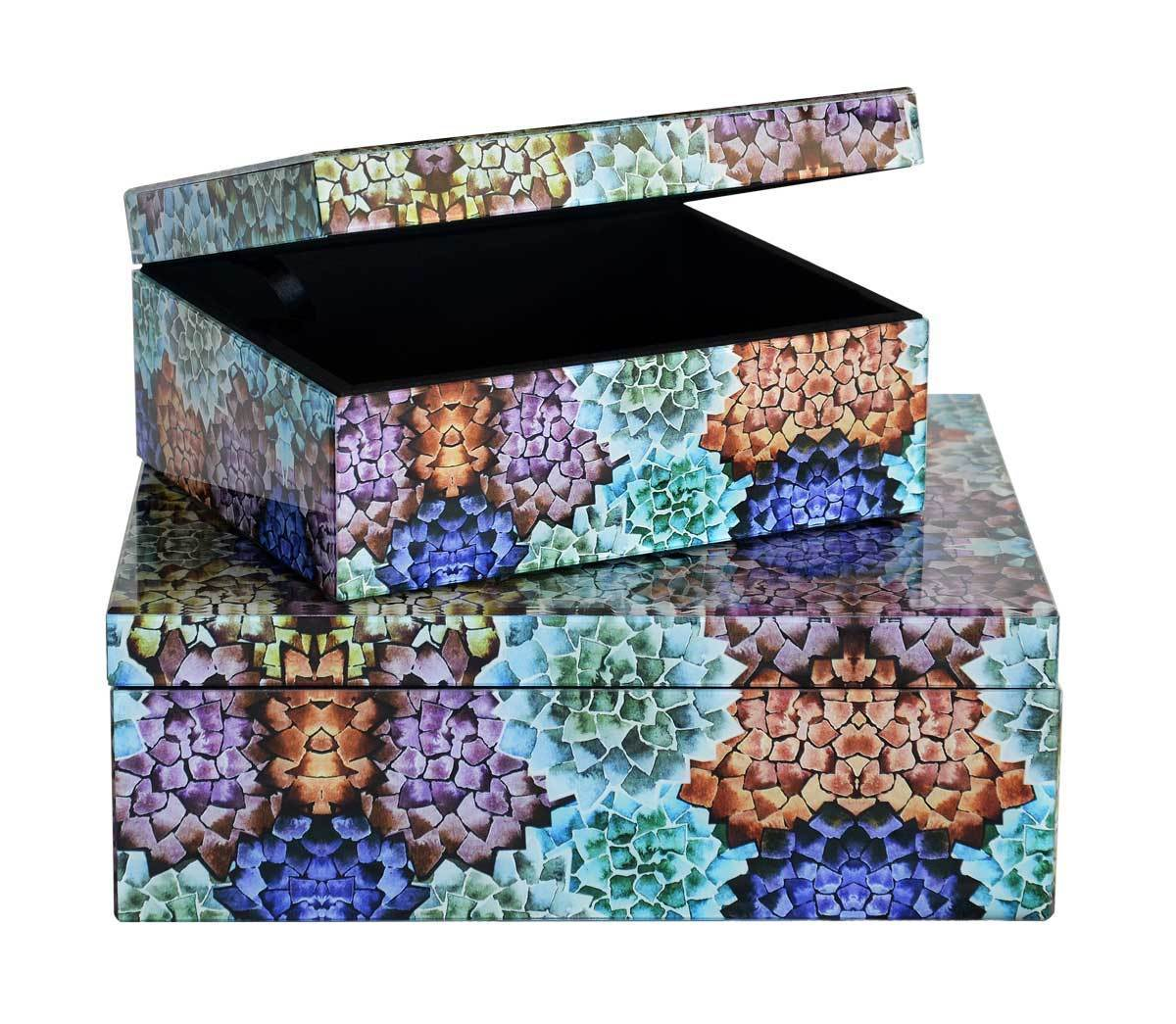 Glass box cactus large set of two boxes