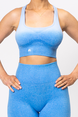Ella Ombre Sports Bra Blue