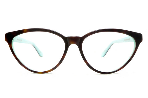 Kala Catdy - brown tortoise/baby blue