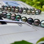 Load image into Gallery viewer, Top Gem Quality | 8.0-11.0 mm Aurora 黒蝶クイーン Multicolor Tahitian Pearl Necklace | Pearl Science Laboratory Appraisal Certificate - takaramonobr