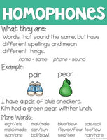 Homophone Activities Freebie