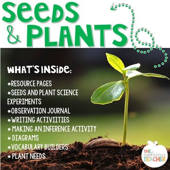 Seed Plant Life Cycle Activities