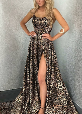 Wild Leopard Long Dress