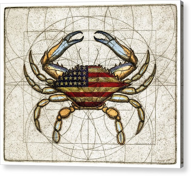 4th Of July Crab - Acrylic Print