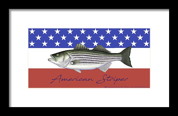 American Striper Patriotic Striped Bass - Framed Print