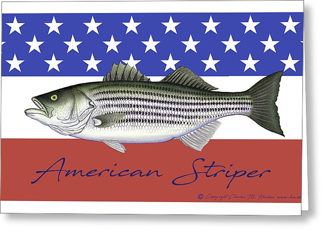American Striper Patriotic Striped Bass - Greeting Card