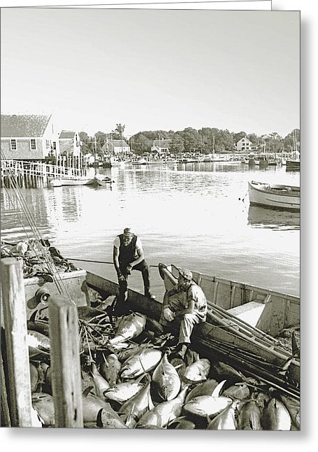 Bluefin Tuna At Barnstable Harbor - Greeting Card