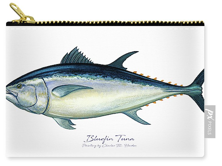 Bluefin Tuna - Carry-All Pouch