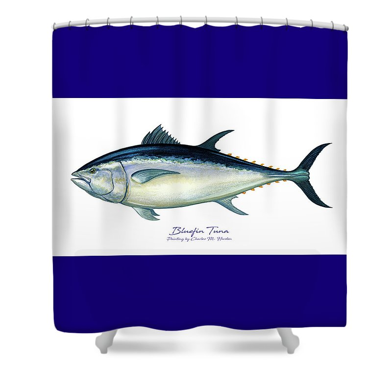 Bluefin Tuna - Shower Curtain