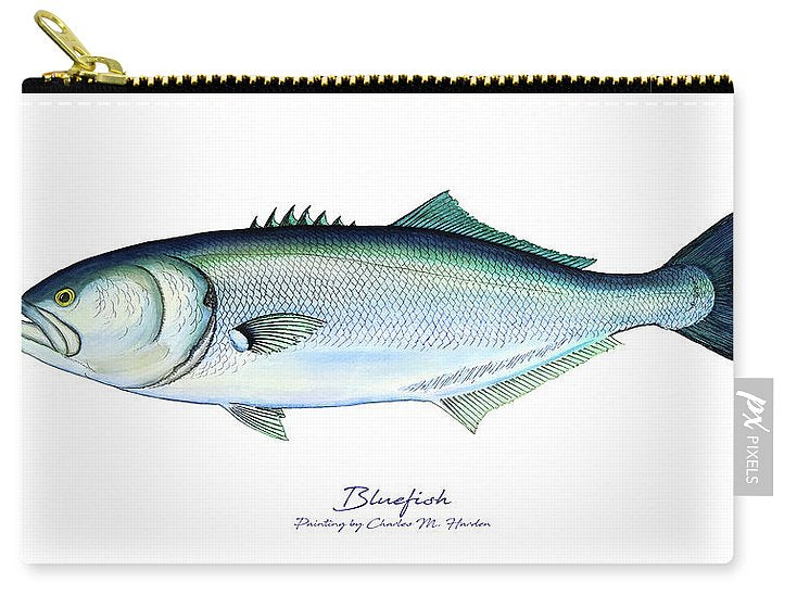 Bluefish - Carry-All Pouch