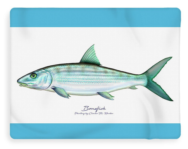 Bonefish - Blanket