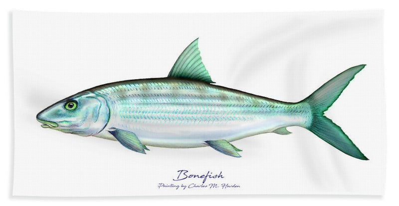 Bonefish - Bath Towel