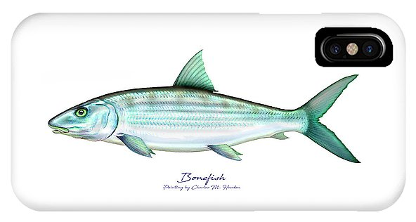 Bonefish - Phone Case