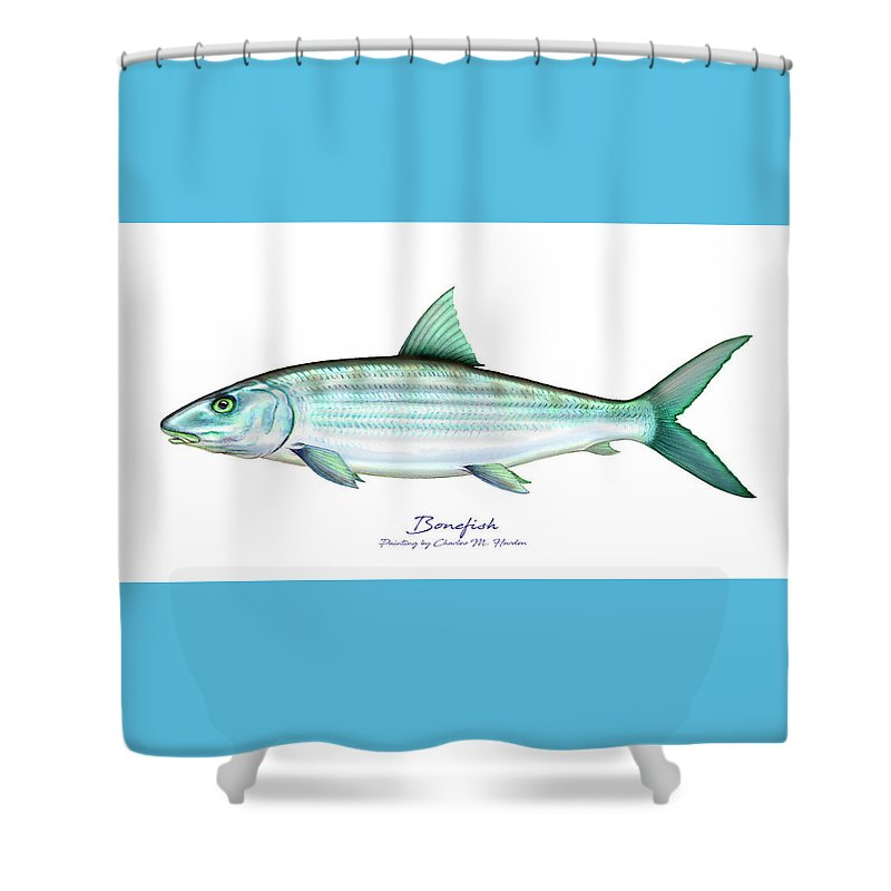 Bonefish - Shower Curtain