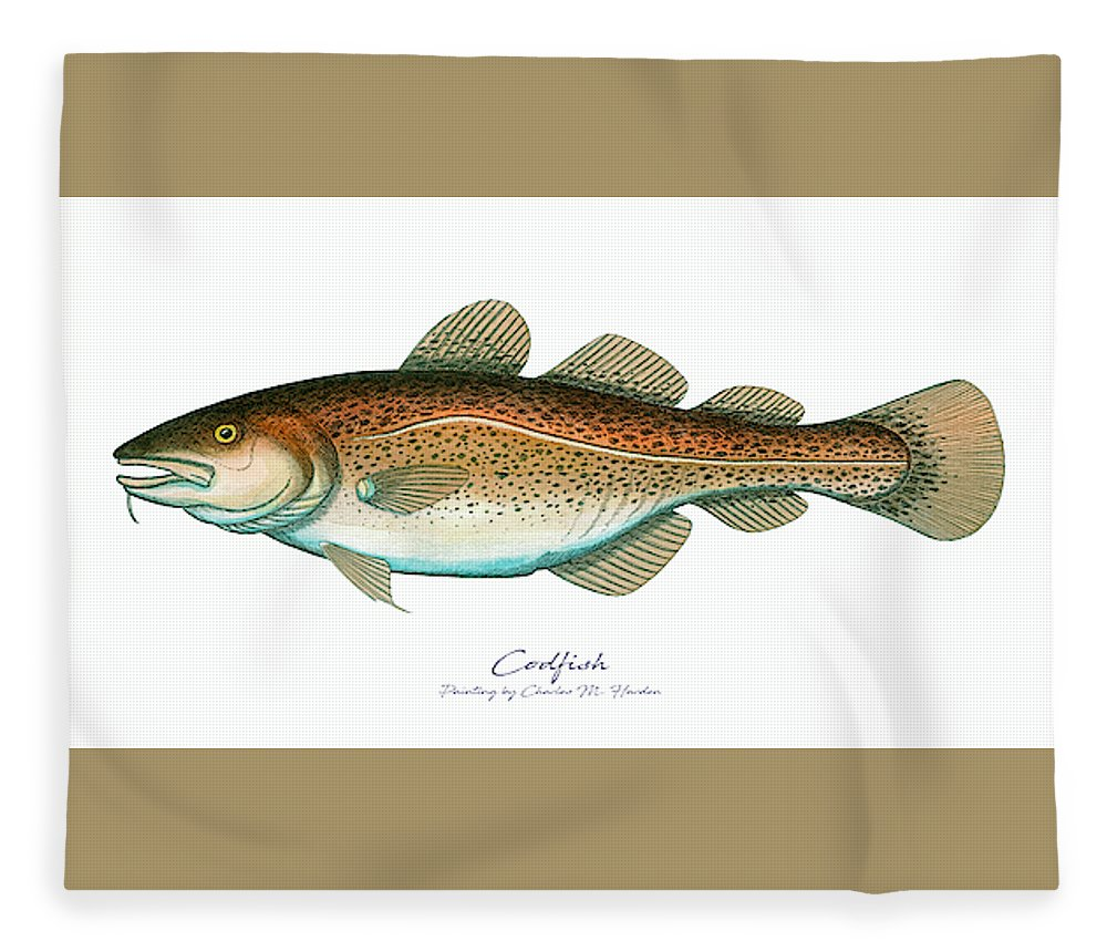 Codfish - Blanket