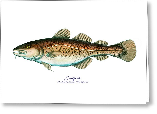 Codfish - Greeting Card