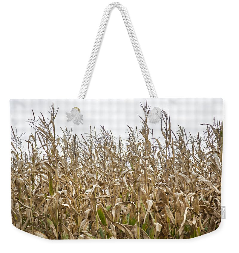 Vermont Cornfield Farm Near Stowe - Weekender Tote Bag