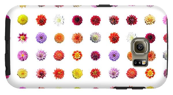 Dahlias - Phone Case