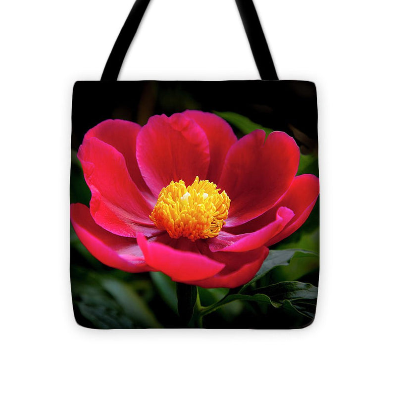 Evening Peony - Tote Bag
