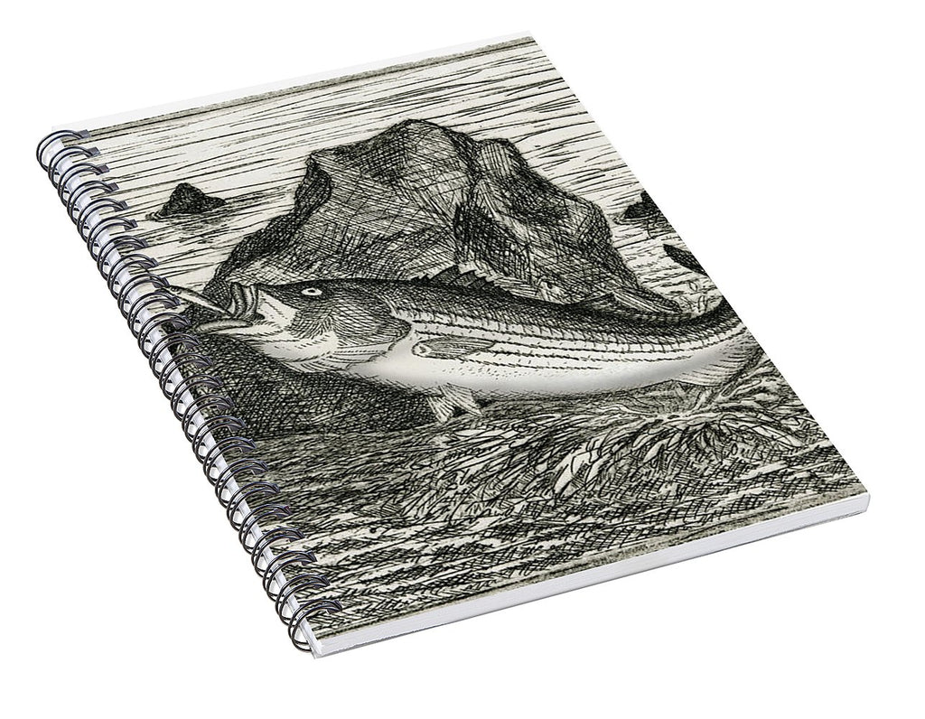 Fishing The Rocks - Spiral Notebook