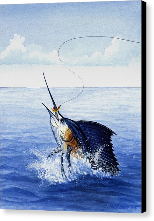 Fly Fishing For Sailfish - Canvas Print