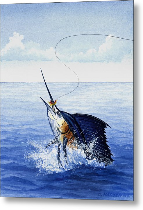 Fly Fishing For Sailfish - Metal Print