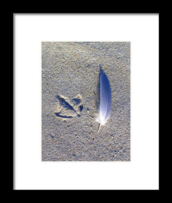 Footprint And Feather - Framed Print