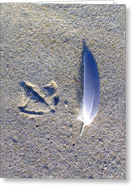 Footprint And Feather - Greeting Card