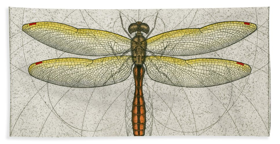 Golden Winged Skimmer - Beach Towel