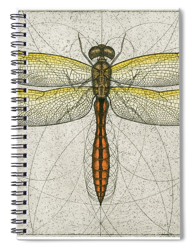 Golden Winged Skimmer - Spiral Notebook