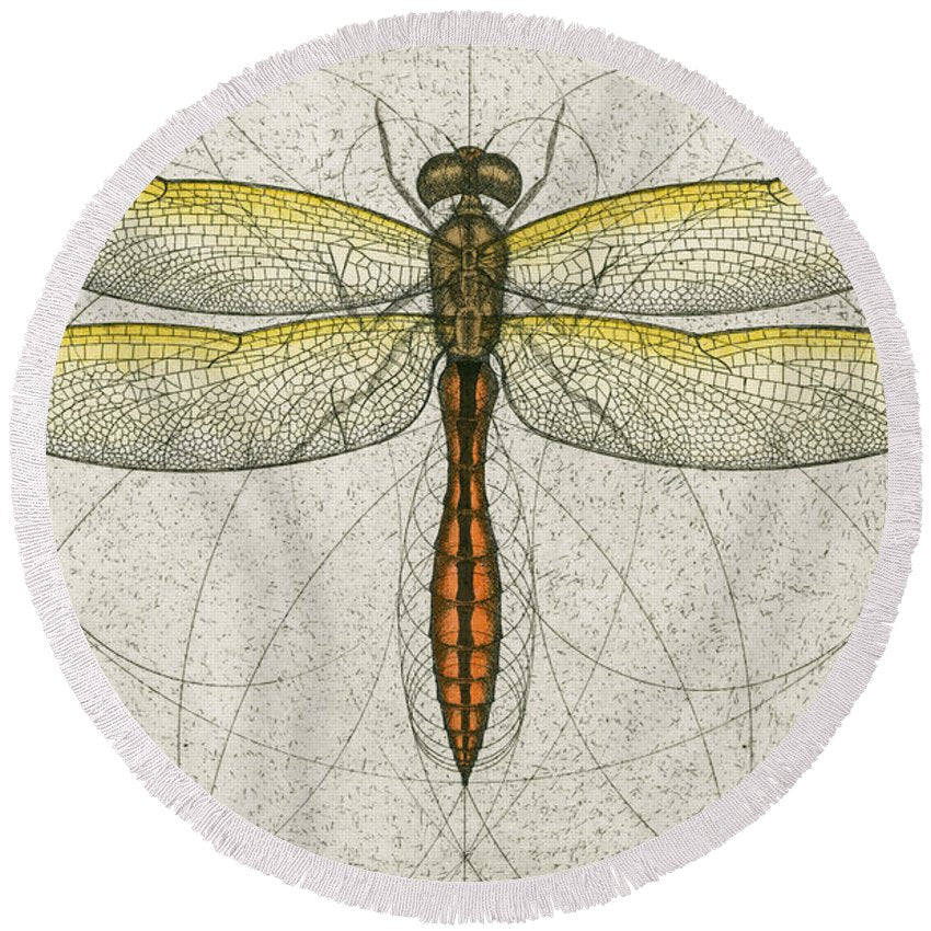 Golden Winged Skimmer - Round Beach Towel