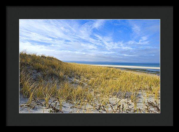 Grassy Sand Dunes Overlooking The Beach - Framed Print