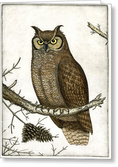 Great Horned Owl - Greeting Card
