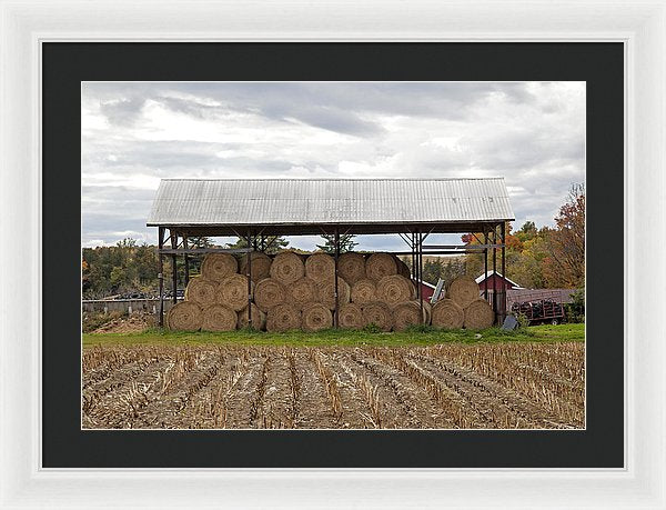 Hay Bales In Vermont - Framed Print