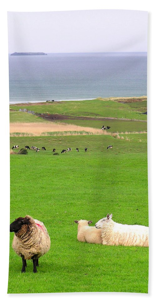 Irish Coast County Kerry Dingle - Bath Towel