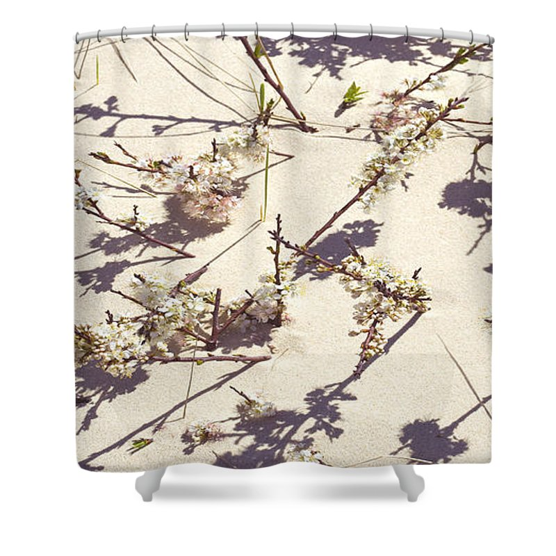 Tashmoo Sand Dune With Blossoms - Shower Curtain