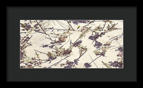 Tashmoo Sand Dune With Blossoms - Framed Print