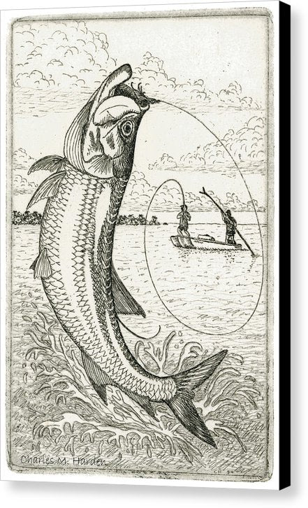 Leaping Tarpon - Canvas Print