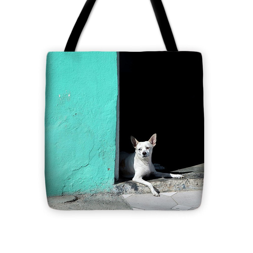 Little Dog In Doorway Havana Cuba - Tote Bag