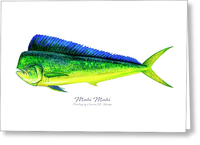 Mahi Mahi - Greeting Card