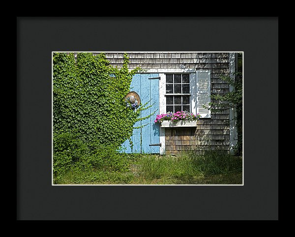 Millway Scene In Barnstable - Framed Print