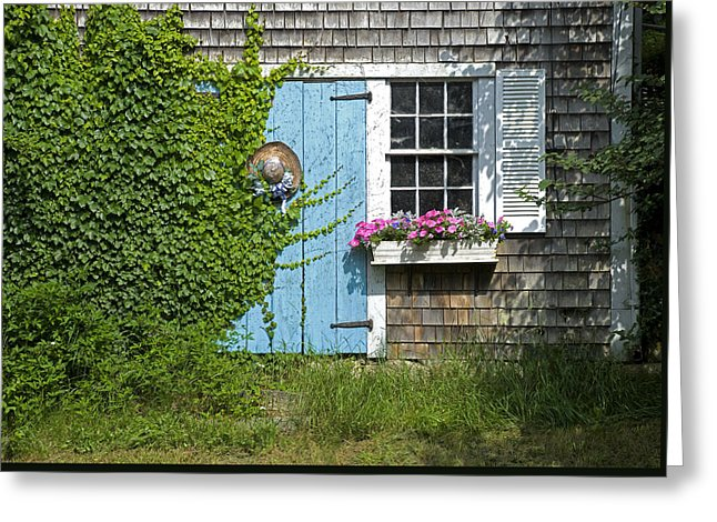 Millway Scene In Barnstable - Greeting Card