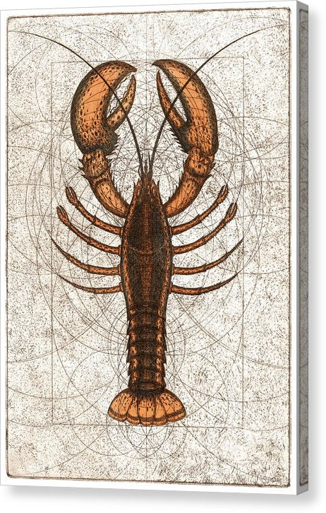 Northern Lobster - Canvas Print