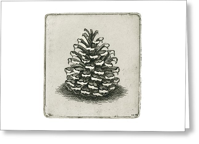 One Pinecone - Greeting Card