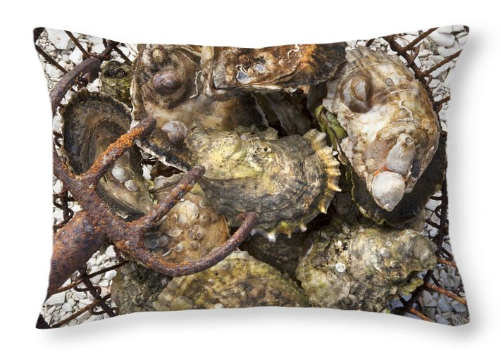 Oysters - Throw Pillow